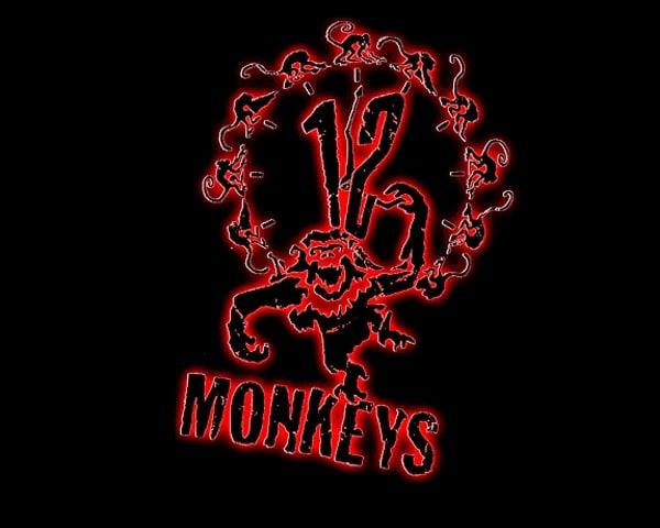 12-scimmie