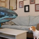 Il cane anti Sharknado