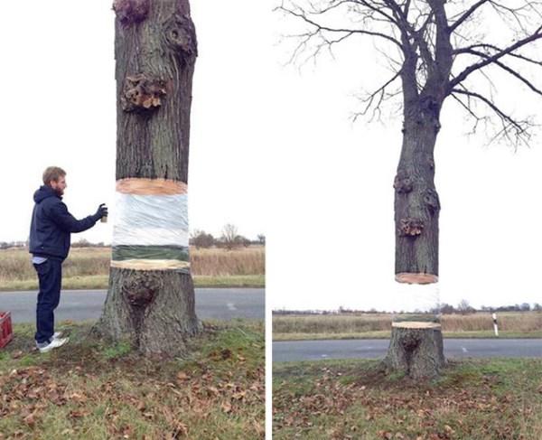 alberi-levitanti (600 x 487)