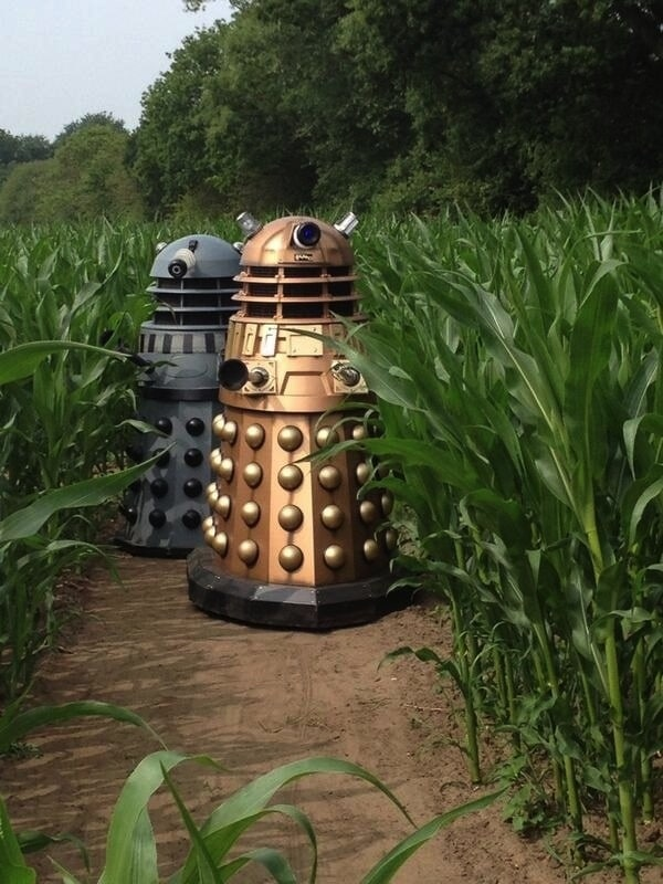 campo-doctor-who3