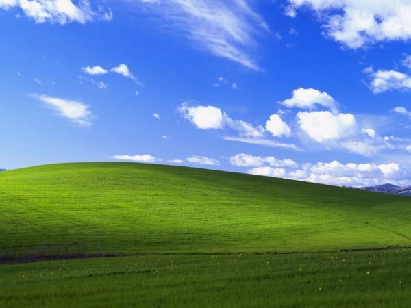 collina-windows (600 x 450)