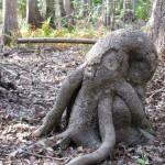 Il Cthulhu dei boschi