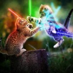 Cat Wars – Guerre Stellari in versione felina
