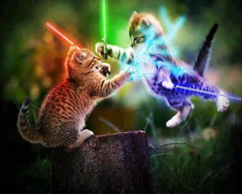 gatti-wars