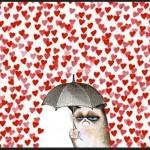 Il San Valentino di Grumpy Cat