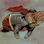 Il Super Lamantino della settimana – Superman