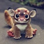 Little Fantasy Creature, gli animali che tutti vorrebbero
