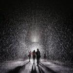 La stanza della pioggia del MoMa di New York