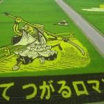 Delle spettacolari risaie artistiche in Giappone
