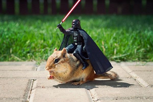scoiattoli-star-wars-1