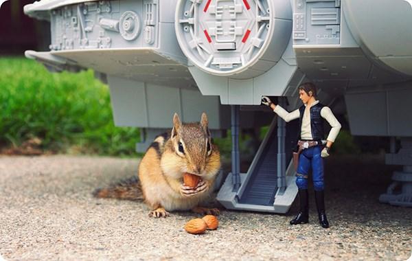 scoiattoli-star-wars-3