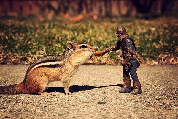 scoiattoli-star-wars-5