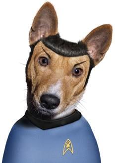 star-trek-dog
