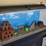 Un acquario dedicato a Super Mario