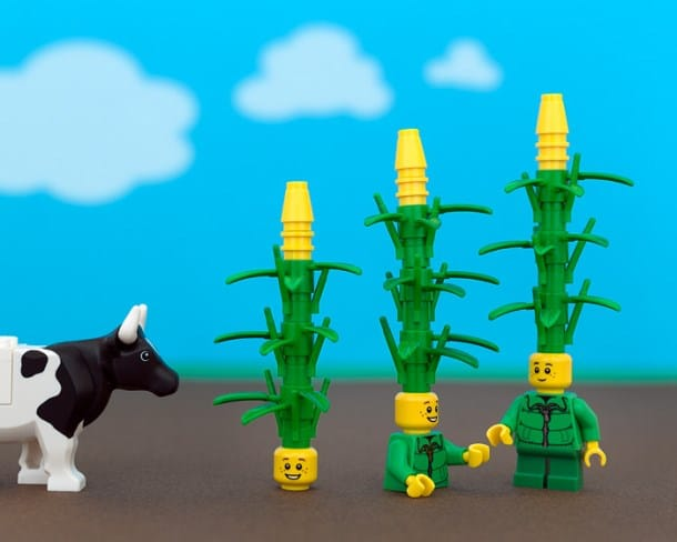 united-states-of-lego-iowa