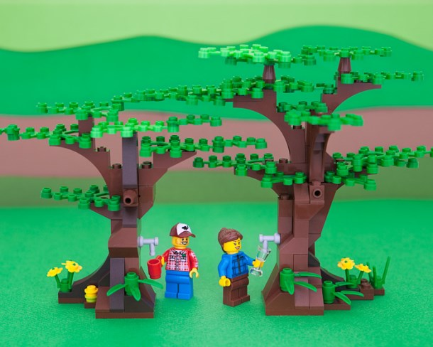 united-states-of-lego-vermont